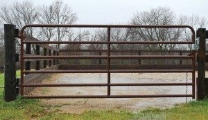 10 Foot Brown Arena Gate