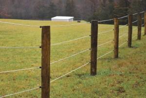 4-Strand White Lightning Fence