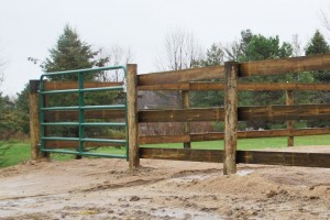 Arena Fence & Gate