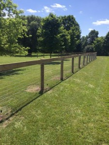 Woven Wire Fencing