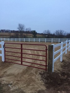 Vinyl Arena and Gate